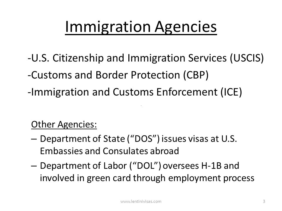 Immigration Agencies www.lentinivisas.com -U.S. Citizenship and Immigration Services (USCIS) -Customs and Border Protection (CBP) -Immigration and Cus