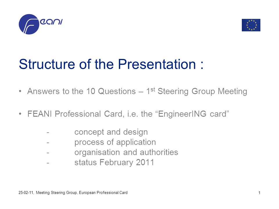 Structure of the Presentation : Answers to the 10 Questions – 1 st Steering Group Meeting FEANI Professional Card, i.e. the EngineerING card -concept