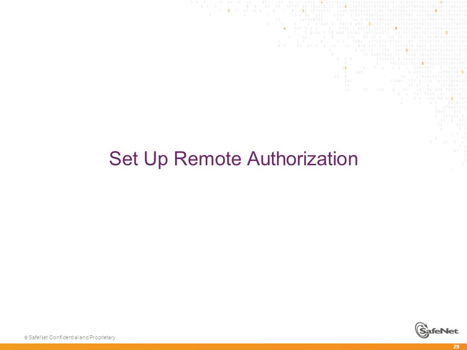 29 © SafeNet Confidential and Proprietary Set Up Remote Authorization