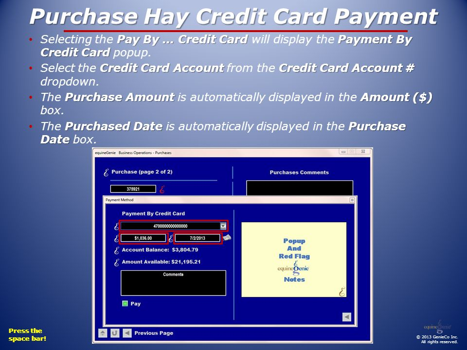 Press the space bar! Press the space bar! Press the space bar! Press the space bar! Purchase Hay Credit Card Payment © 2013 GenieCo Inc. All rights re
