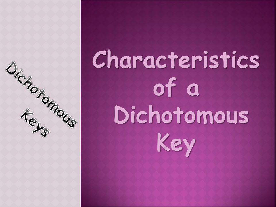 Characteristics of a Dichotomous Key Dichotomous Key