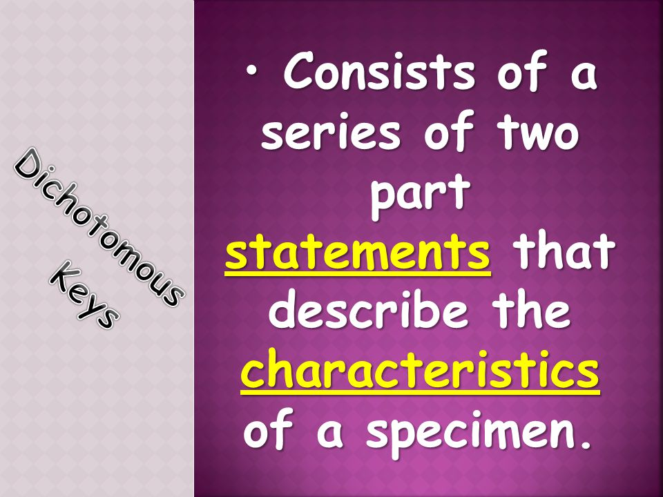 Consists of a series of two part Consists of a series of two part statements that describe the characteristics of a specimen.