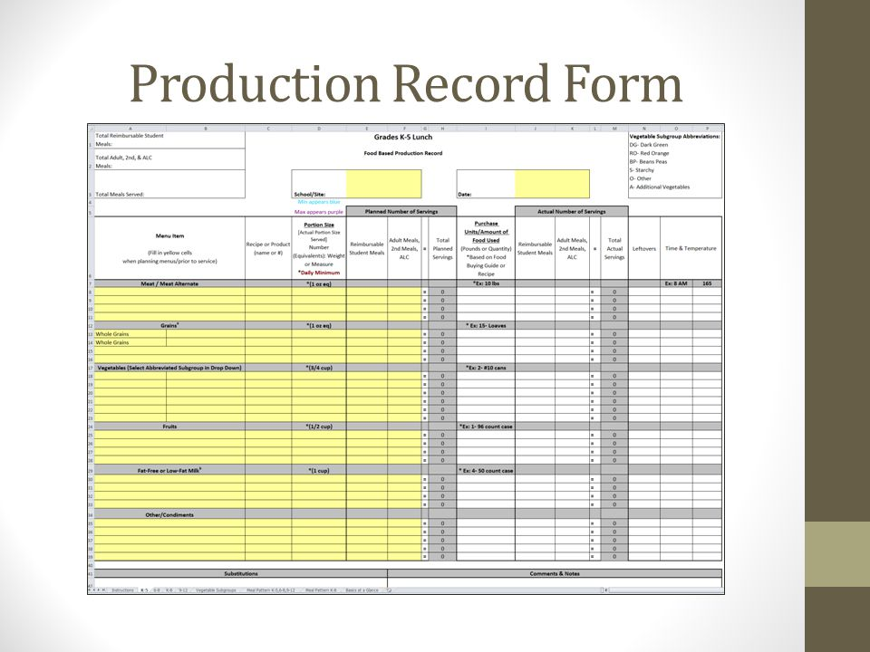 Production Record Form