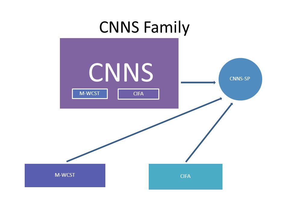 CNNS Family CNNS CIFA M-WCST CNNS-SP CIFA