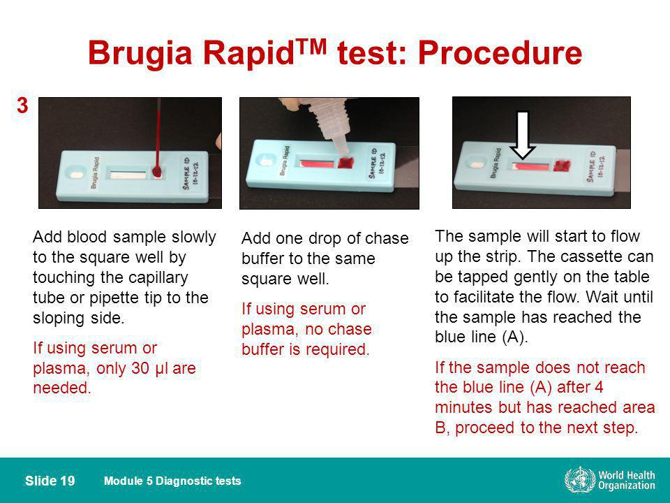 Module 5 Diagnostic tests Brugia Rapid TM test: Procedure 3 Add blood sample slowly to the square well by touching the capillary tube or pipette tip t