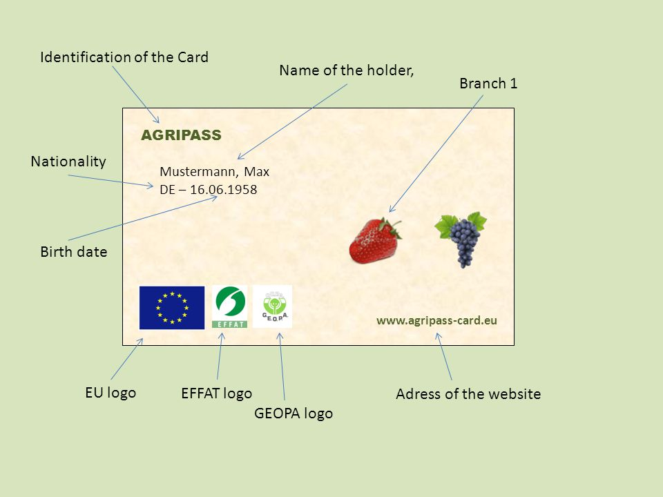 AGRIPASS Mustermann, Max DE – 16.06.1958 www.agripass-card.eu Identification of the Card Name of the holder, Nationality Birth date EU logo EFFAT logo GEOPA logo Adress of the website Branch 1 Branch 2