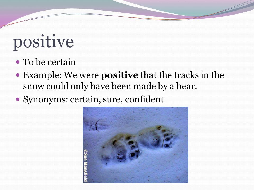 positive To be certain Example: We were positive that the tracks in the snow could only have been made by a bear. Synonyms: certain, sure, confident