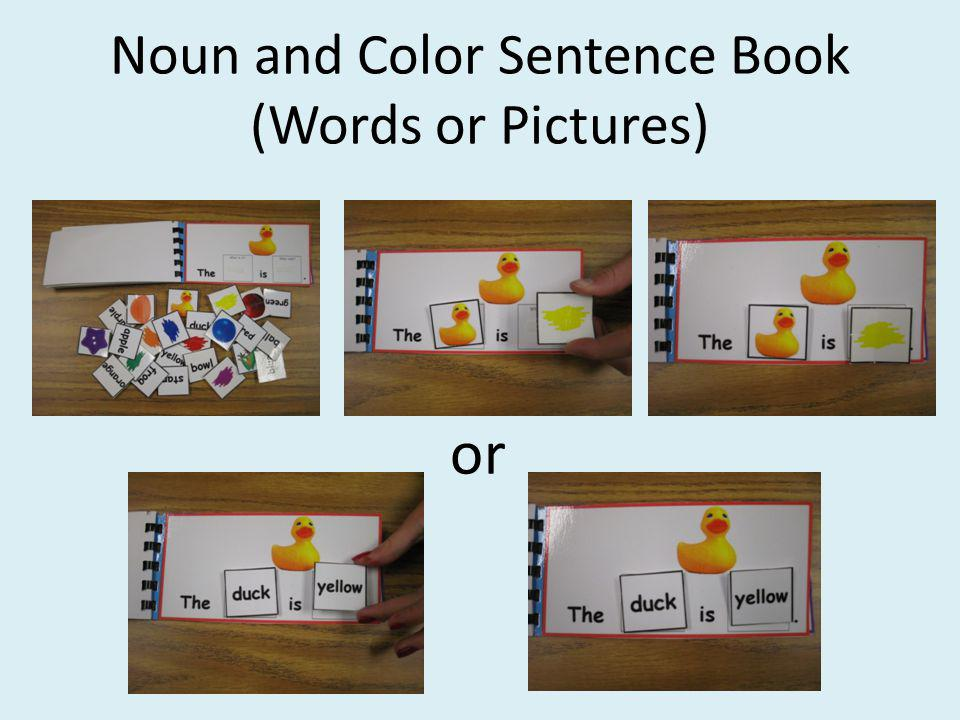 Noun and Color Sentence Book (Words or Pictures) or