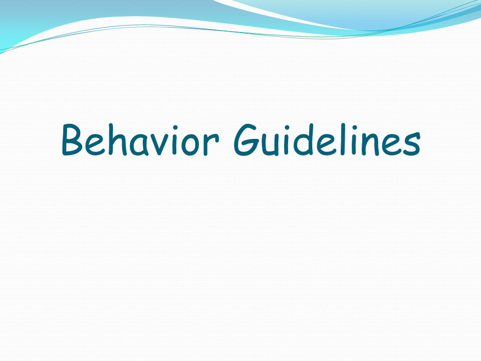 Behavior Guidelines