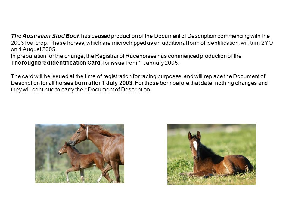 The Australian Stud Book has ceased production of the Document of Description commencing with the 2003 foal crop. These horses, which are microchipped