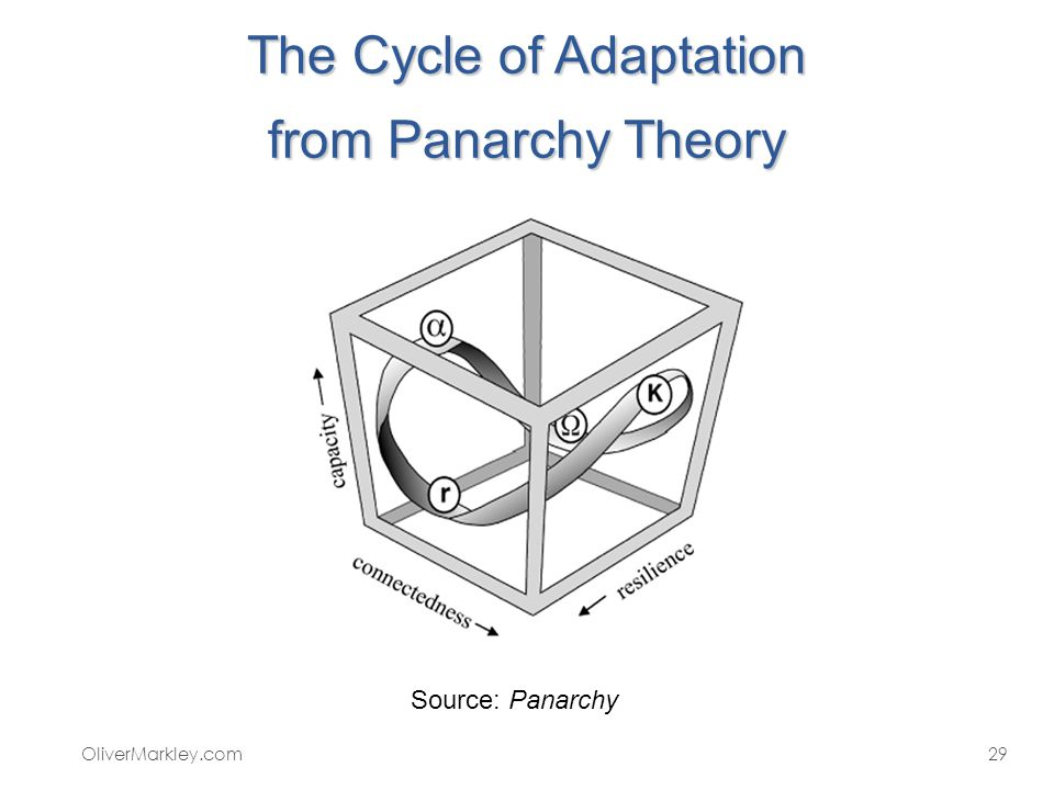 The Cycle of Adaptation from Panarchy Theory OliverMarkley.com29 Source: Panarchy