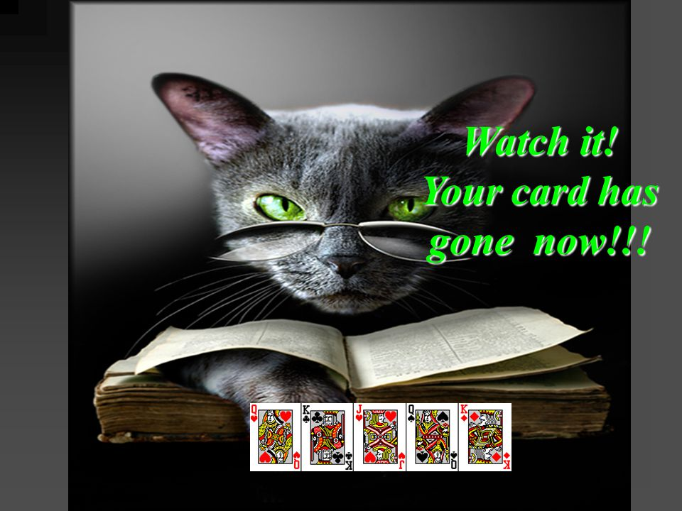Watch it! Your card has gone now!!!