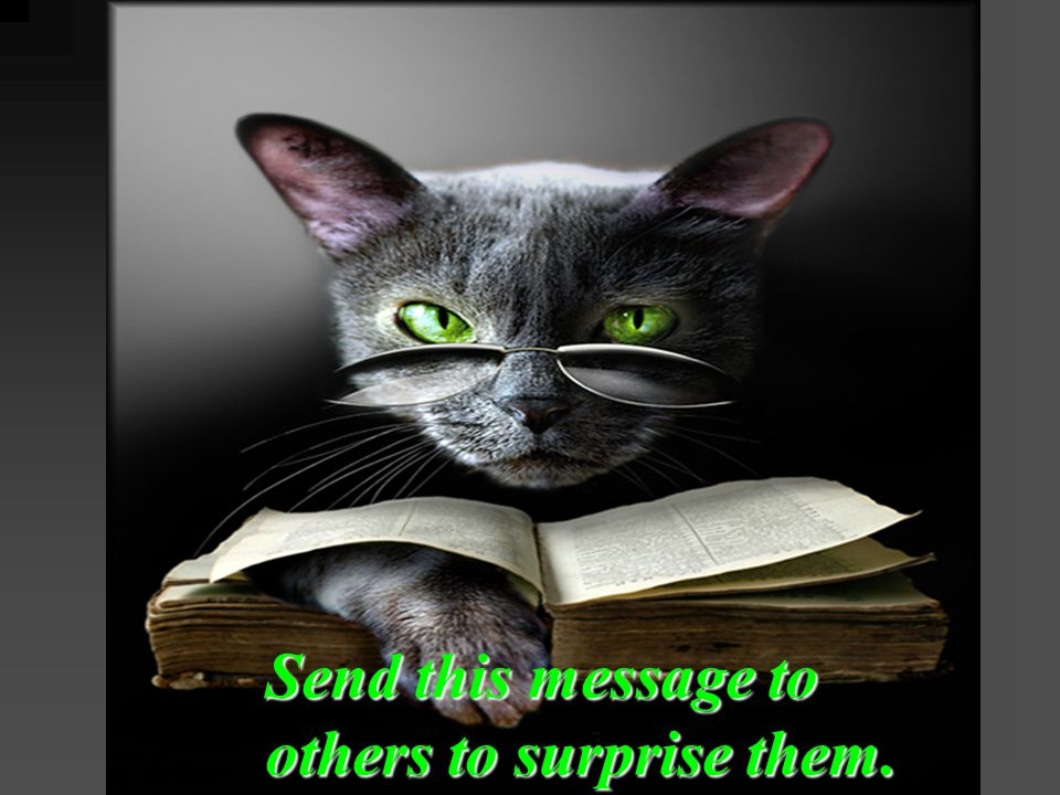 Send this message to others to surprise them.