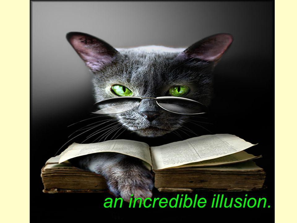 an incredible illusion.