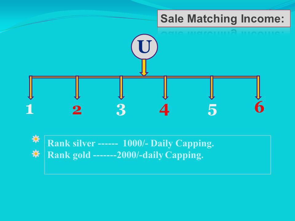 U 1 2 345 6 1,3,5 is A Leg and 2,4,6 is B Leg. Sale Matching income Is Auto Generated Income.