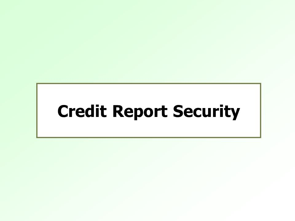 Credit Report Security