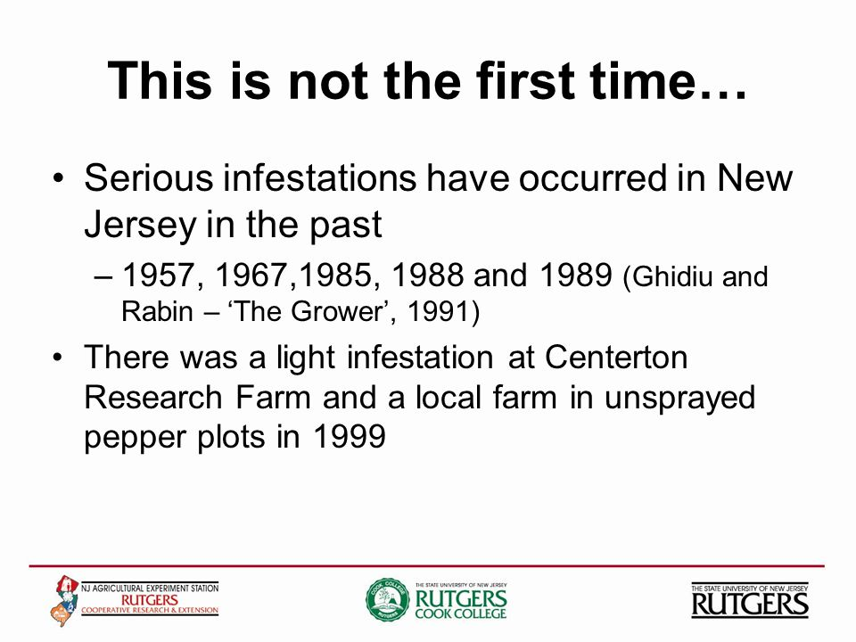 This is not the first time… Serious infestations have occurred in New Jersey in the past –1957, 1967,1985, 1988 and 1989 (Ghidiu and Rabin – The Grower, 1991) There was a light infestation at Centerton Research Farm and a local farm in unsprayed pepper plots in 1999