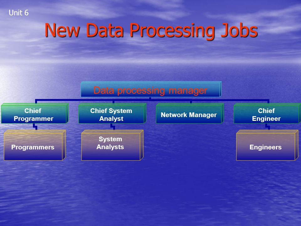New Data Processing Jobs Data processing manager Chief Programmer Programmers Chief System Analyst System Analysts Network Manager Chief Engineer Engi