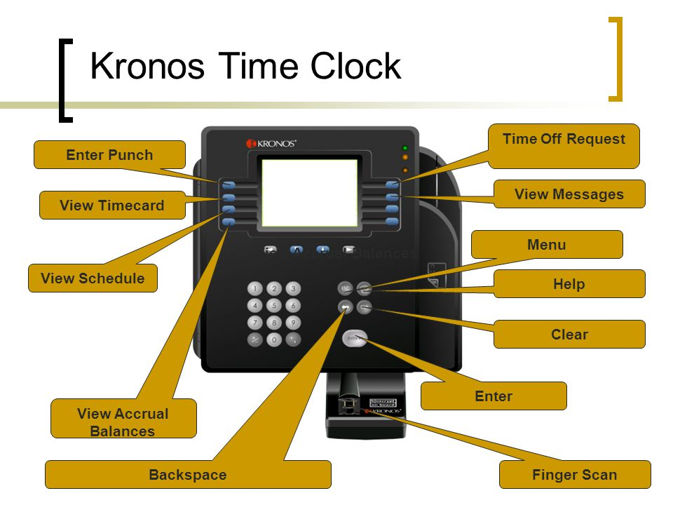 View Schedule View Timecard Enter View Accrual Balances Enter Punch View Accrual Balances Time Off Request View Messages Backspace Finger Scan Menu Help Clear Kronos Time Clock