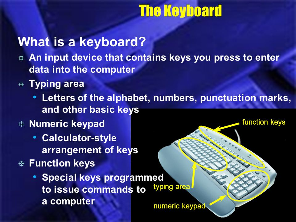 The Keyboard What is a keyboard? An input device that contains keys you press to enter data into the computer Typing area Letters of the alphabet, num