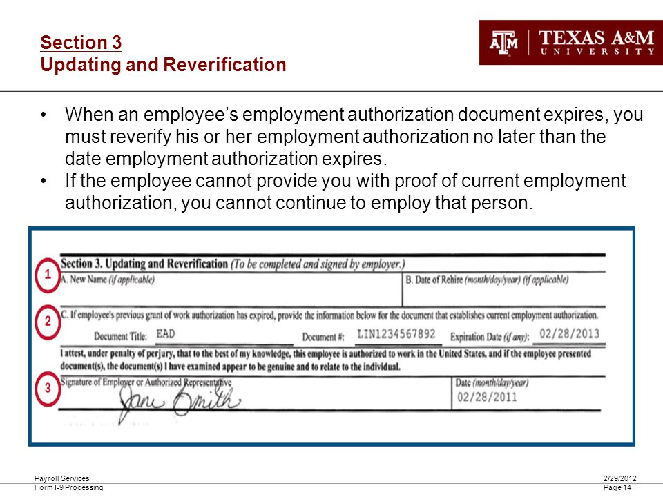 Payroll Services Form I-9 Processing 2/29/2012 Page 14 Section 3 Updating and Reverification When an employees employment authorization document expir