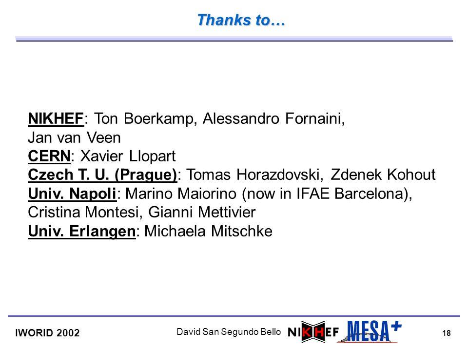 18 IWORID 2002 David San Segundo Bello NIKHEF: Ton Boerkamp, Alessandro Fornaini, Jan van Veen CERN: Xavier Llopart Czech T. U. (Prague): Tomas Horazd