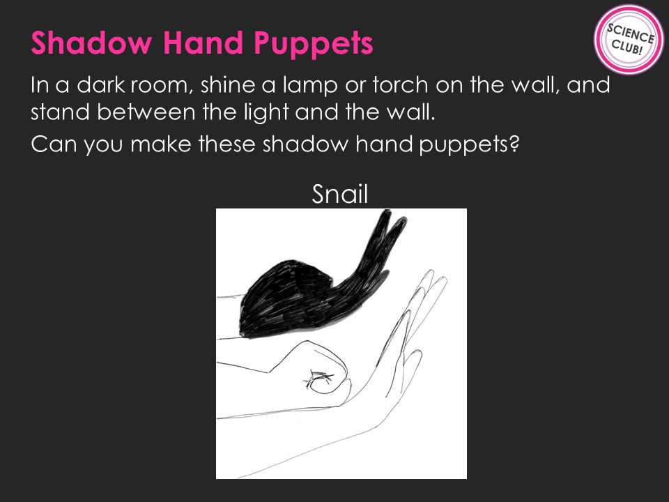 Snail Shadow Hand Puppets In a dark room, shine a lamp or torch on the wall, and stand between the light and the wall.