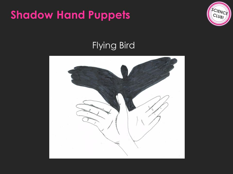 Flying Bird Shadow Hand Puppets