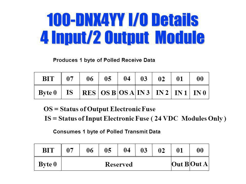 100-DNX4YY I/O Details 4 Input/2 Output Module Produces 1 byte of Polled Receive Data 0605 04 03 02 0100BIT07 IN 3IN 2 IN 1IN 0 Byte 0 Consumes 1 byte