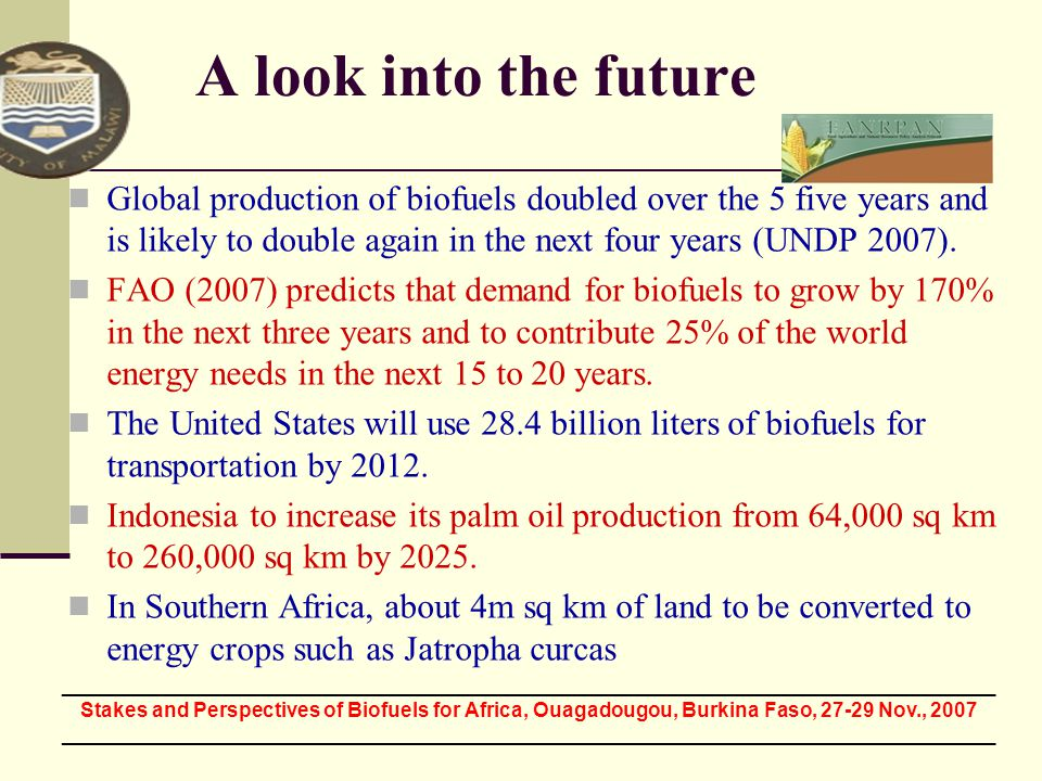 A look into the future Global production of biofuels doubled over the 5 five years and is likely to double again in the next four years (UNDP 2007). F
