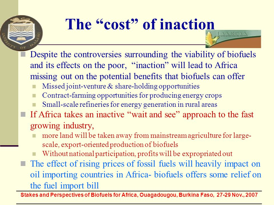 The cost of inaction Despite the controversies surrounding the viability of biofuels and its effects on the poor, inaction will lead to Africa missing