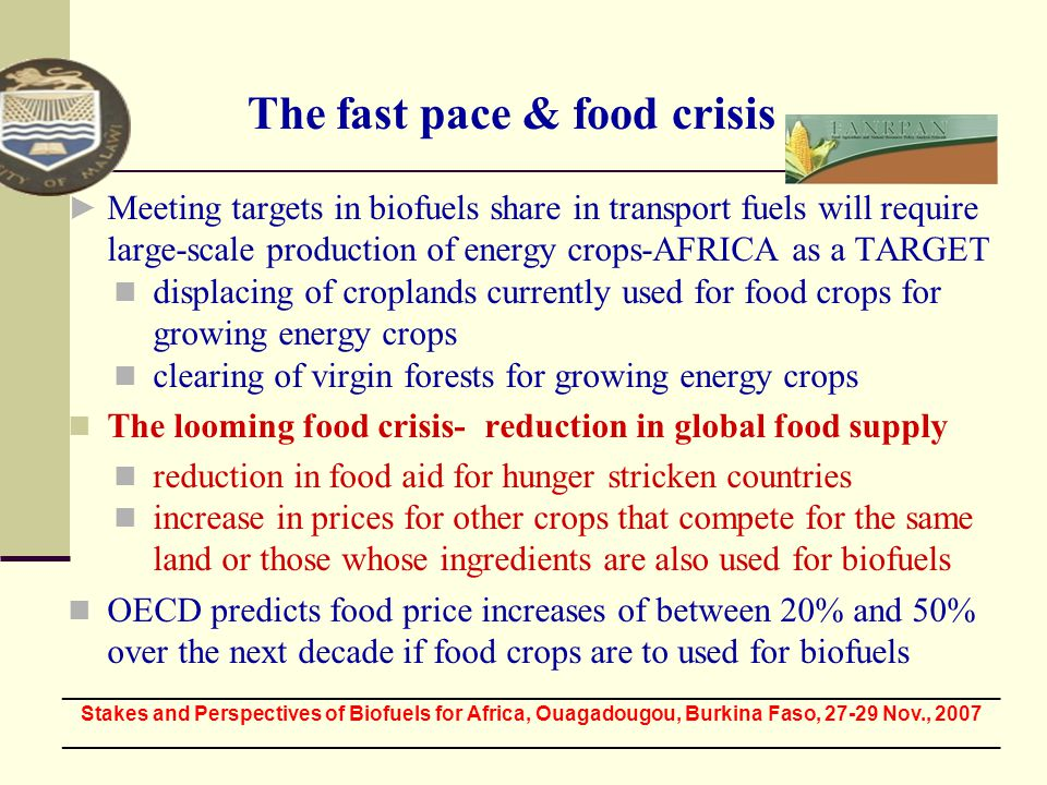 The fast pace & food crisis Meeting targets in biofuels share in transport fuels will require large-scale production of energy crops-AFRICA as a TARGE