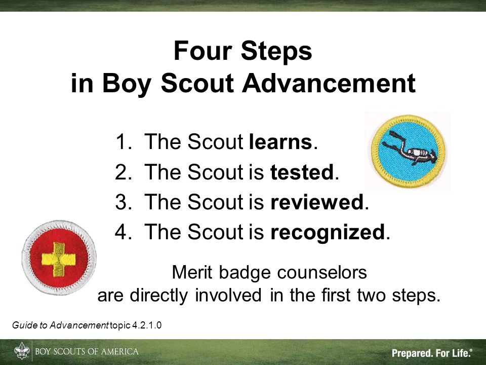 Four Steps in Boy Scout Advancement 1.The Scout learns. 2.The Scout is tested. 3.The Scout is reviewed. 4.The Scout is recognized. Guide to Advancemen