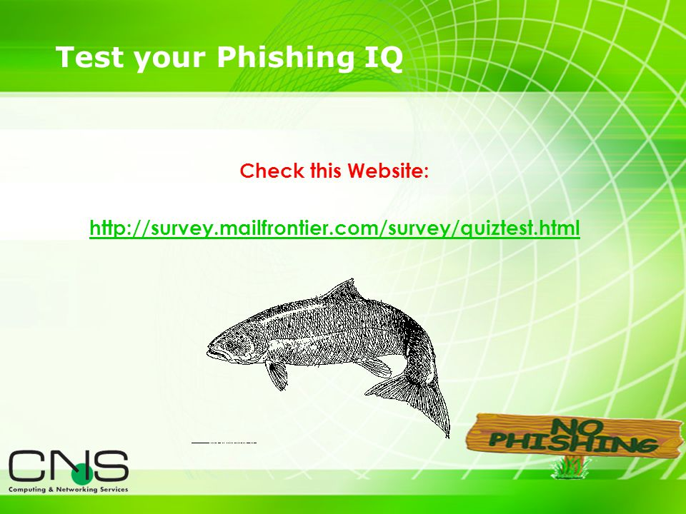 28 Test your Phishing IQ Check this Website: http://survey.mailfrontier.com/survey/quiztest.html