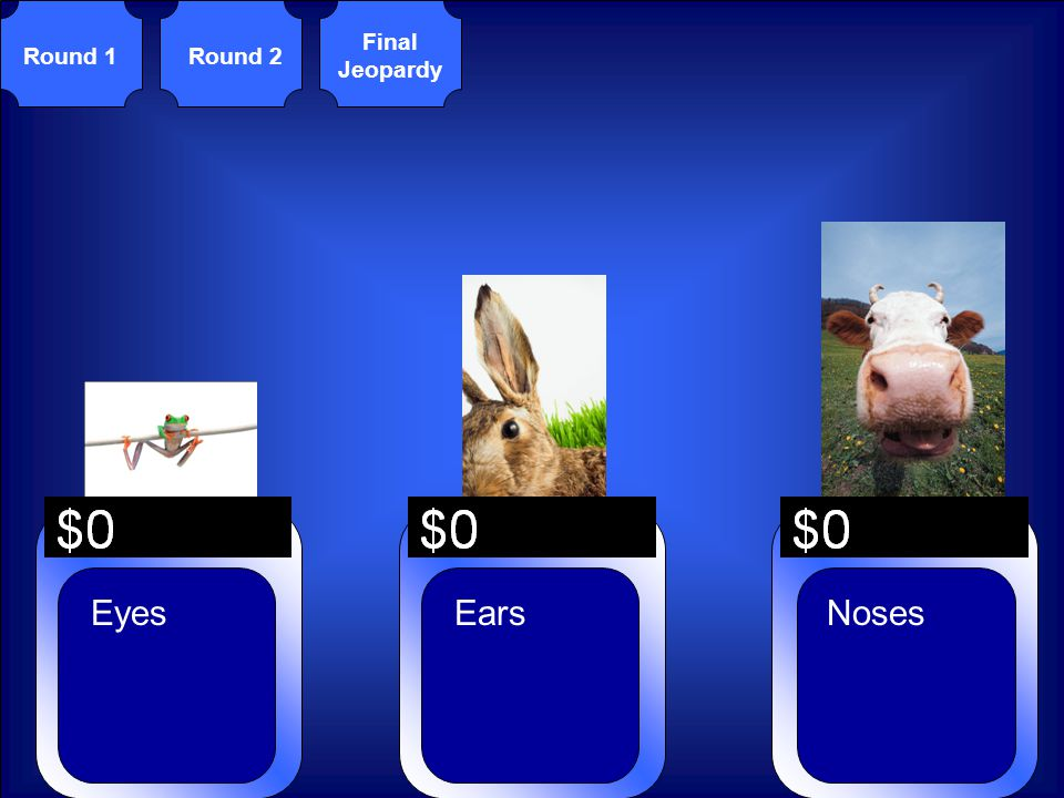 © Mark E. Damon - All Rights Reserved Round 1Round 2 Final Jeopardy NosesEyesEars