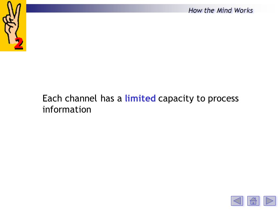 Each channel has a limited capacity to process information How the Mind Works