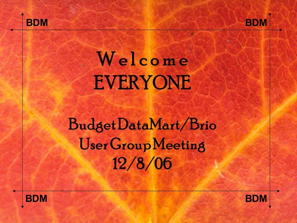 BDM W e l c o m e EVERYONE Budget DataMart/Brio User Group Meeting 12/8/06