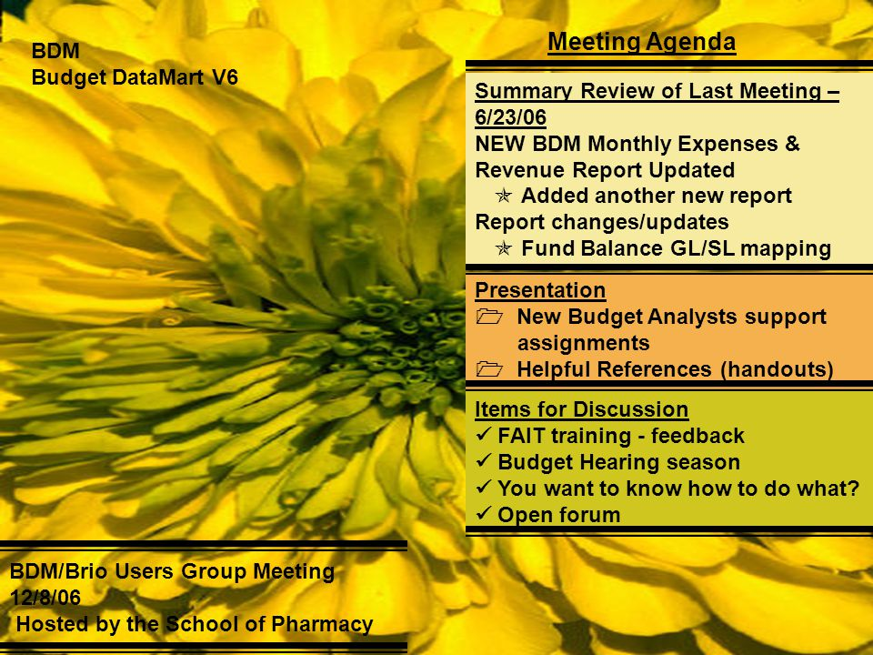 BDM Budget DataMart V6 Meeting Agenda BDM/Brio Users Group Meeting 12/8/06 Hosted by the School of Pharmacy Summary Review of Last Meeting – 6/23/06 N