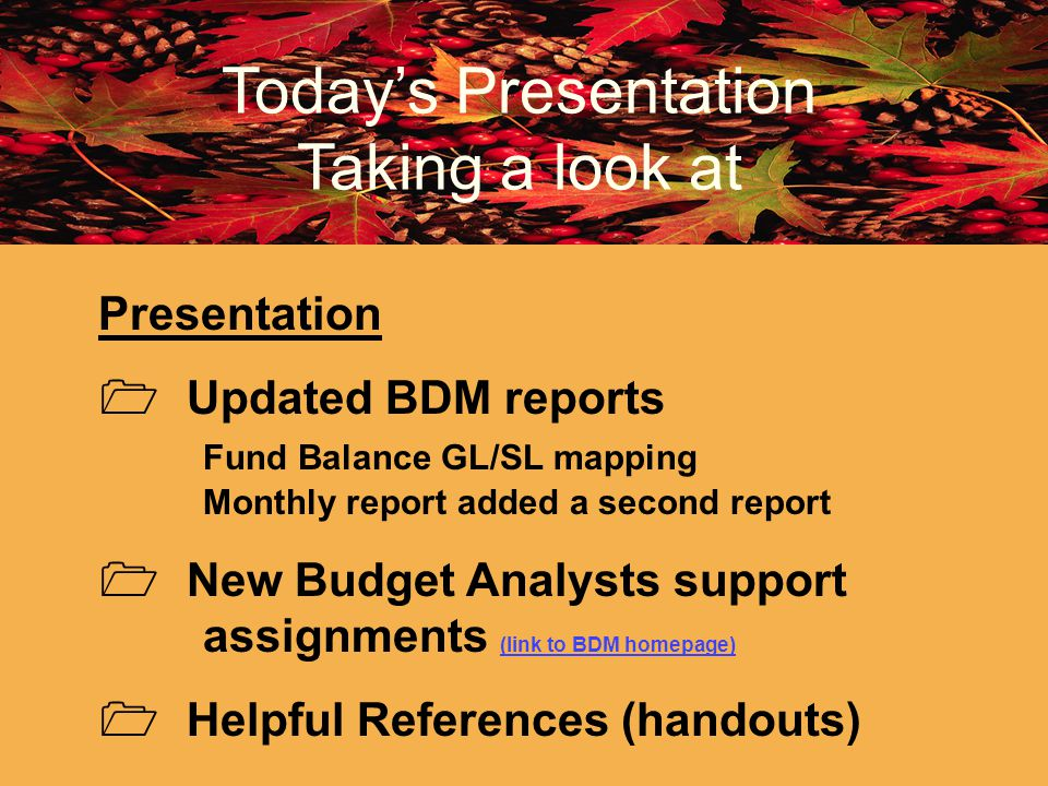 Todays Presentation Taking a look at Presentation Updated BDM reports Fund Balance GL/SL mapping Monthly report added a second report New Budget Analy