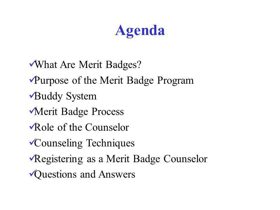 Merit Badge Process