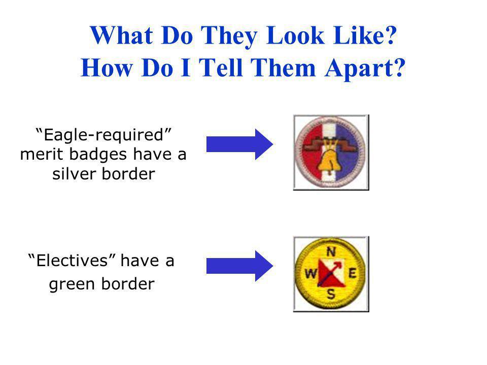 Purpose of the Merit Badge Program