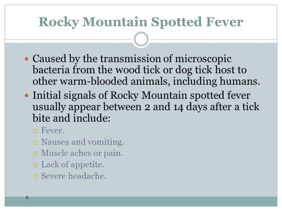 10 Rocky Mountain Spotted Fever Later signals include: Spotted rash, usually starting a few days after fever develops, first appearing as small spots on the wrists and ankles, and then spreading to the rest of the body.