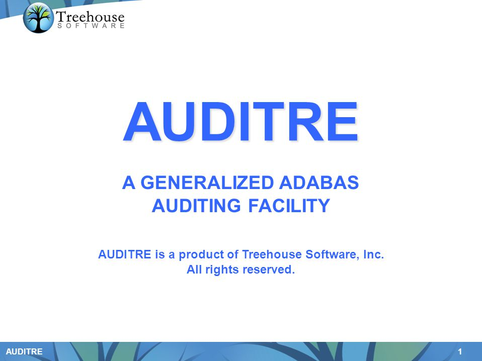 1 AUDITRE A GENERALIZED ADABAS AUDITING FACILITY AUDITRE is a product of Treehouse Software, Inc. All rights reserved. AUDITRE