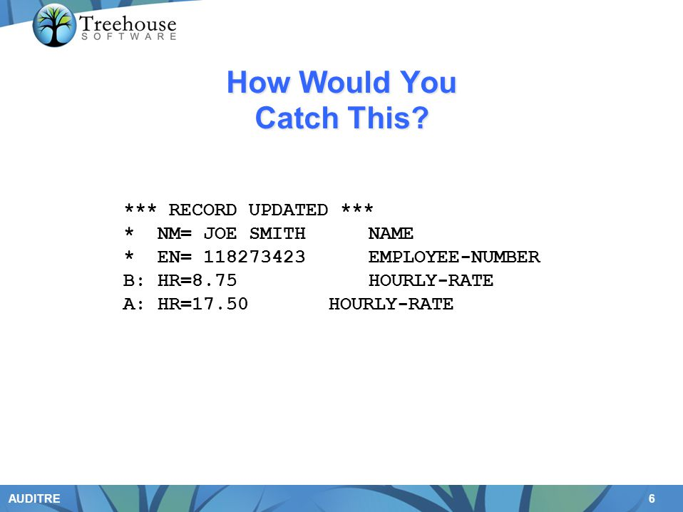 6 AUDITRE How Would You Catch This? *** RECORD UPDATED *** * NM= JOE SMITHNAME * EN= 118273423EMPLOYEE-NUMBER B: HR=8.75 HOURLY-RATE A: HR=17.50 HOURL