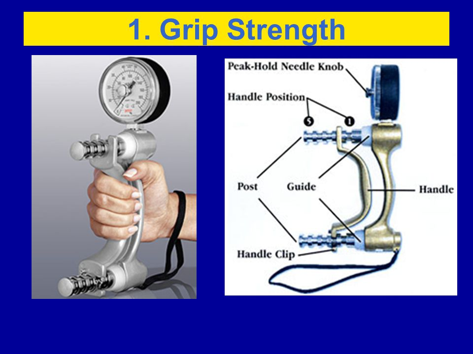 1. Grip Strength