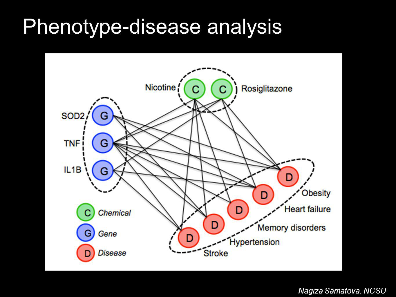Nagiza Samatova. NCSU Phenotype-disease analysis