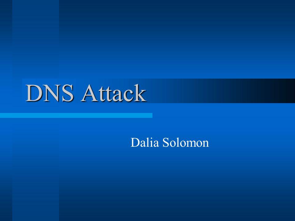 DNS Attack Dalia Solomon