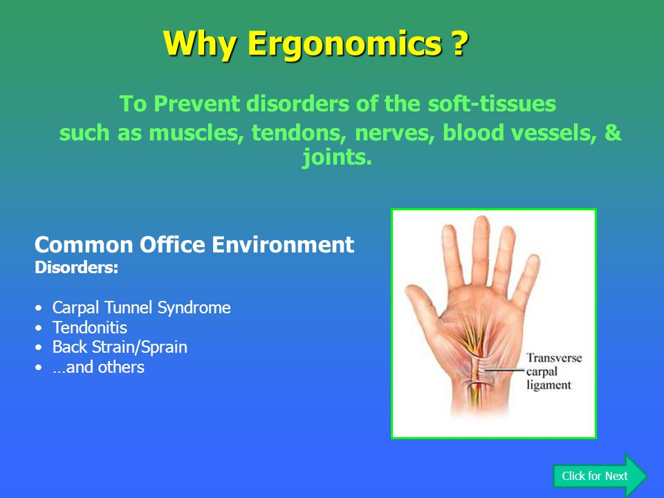 Why Ergonomics ? To Prevent disorders of the soft-tissues such as muscles, tendons, nerves, blood vessels, & joints. Common Office Environment Disorde