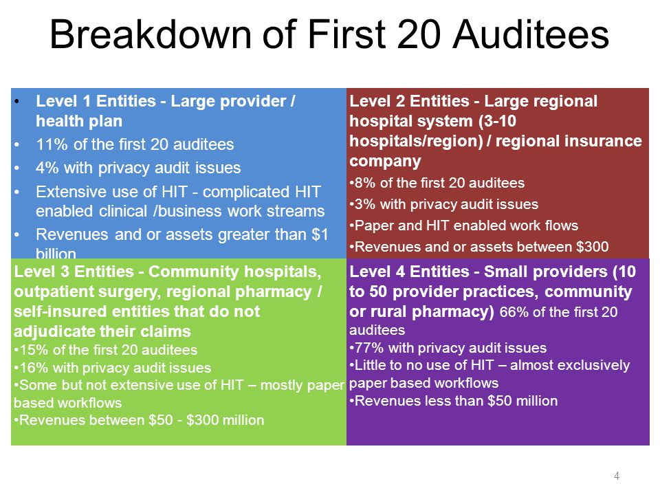 4 Breakdown of First 20 Auditees Level 1 Entities - Large provider / health plan 11% of the first 20 auditees 4% with privacy audit issues Extensive u