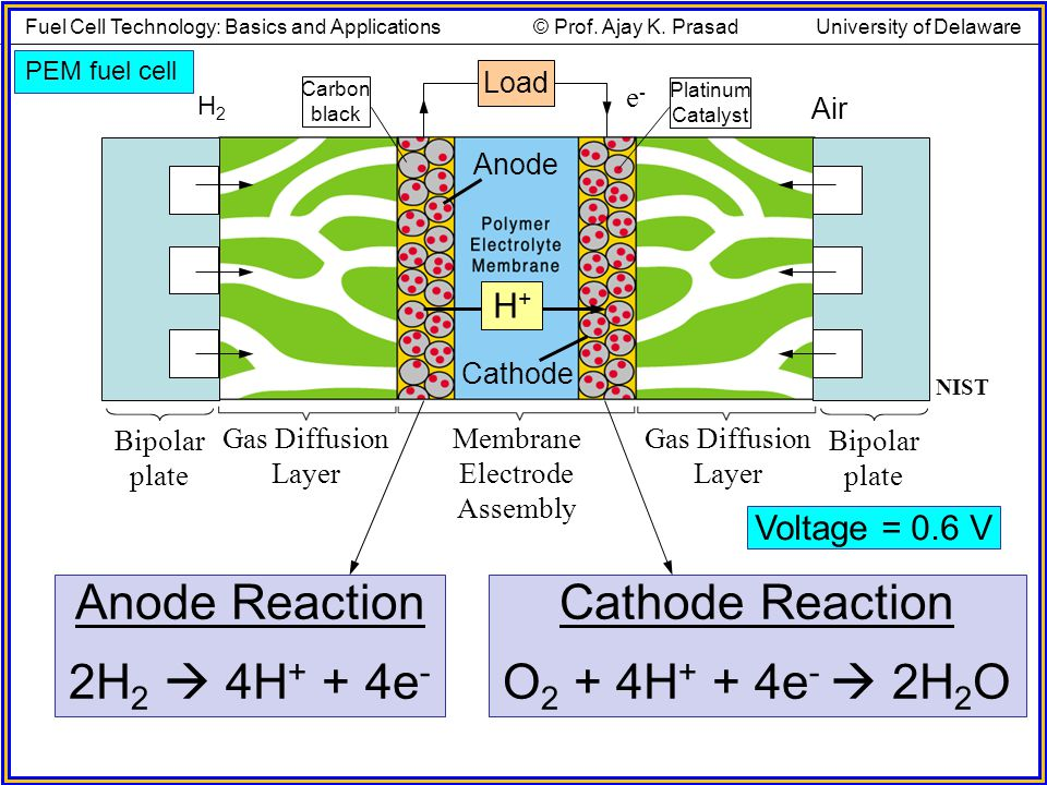 Voltage = 0.6 V PEM fuel cell Cathode Reaction O 2 + 4H + + 4e - 2H 2 O Air Anode Cathode e-e- Membrane Electrode Assembly Gas Diffusion Layer H2H2 Bi